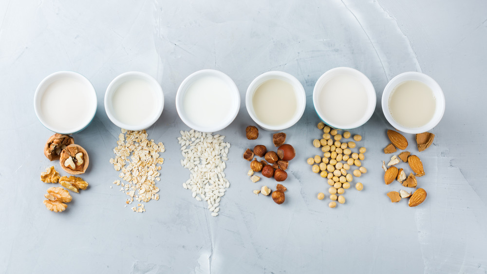 dairy in cups with various nuts in front of each