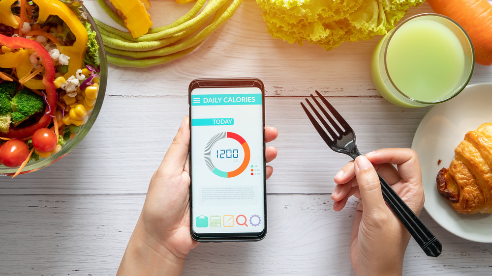 using calorie counter app