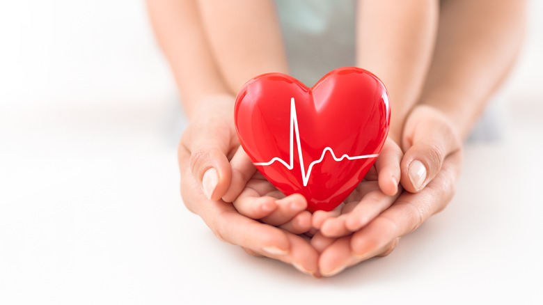 Person holding a heart model in her hands